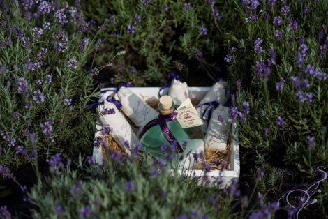 Pure lavender odorizant camera 400 ml